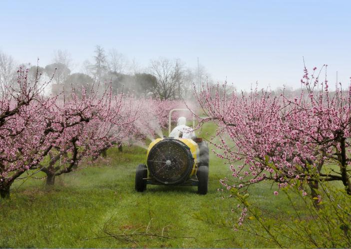 Umwelttoxine aus der Landwirtschaft